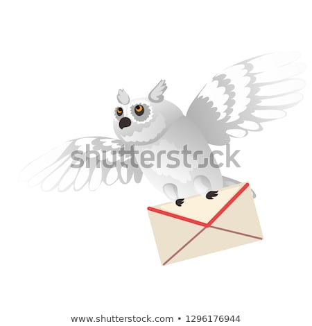 Animated polar owl holding a letter in its paws isolated on white background. Vector cartoon close-u Stock photo © Lady-Luck