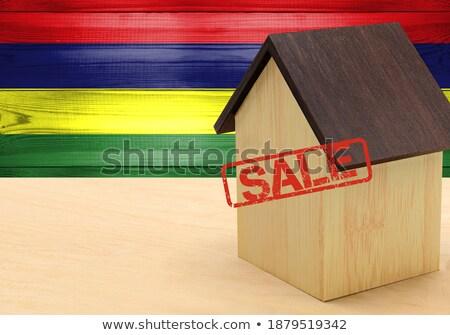 House with flag of mauritius Stock photo © MikhailMishchenko