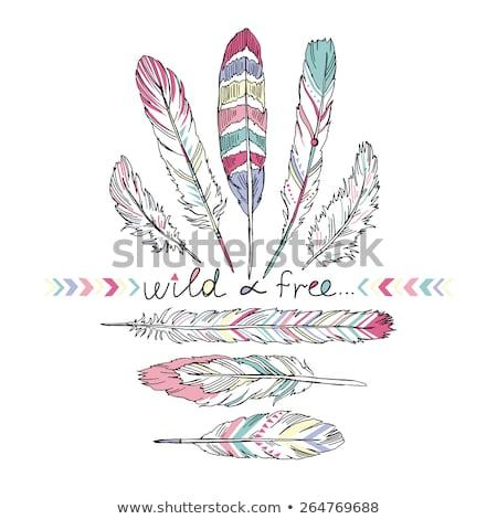Hand drawn bohemian, tribal, ethnic feathers. Colorful set Stock photo © marish