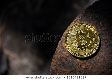 золотая монета bitcoin железной ржавчины бизнеса фон Сток-фото © butenkow