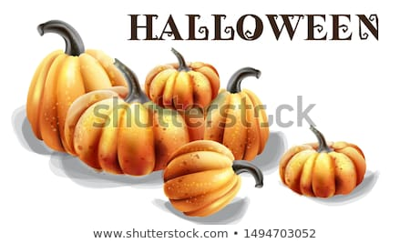 Halloween vecteur couleur pour aquarelle ballons chapeau Photo stock © frimufilms