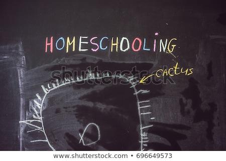 Fiú rajz szó iskolatábla gyermek mutat Stock fotó © galitskaya