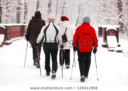 женщину ходьбе зима лес метель парка Сток-фото © robuart