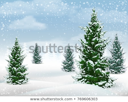 Sunny frosty day in snowy coniferous forest. Christmas holiday c Stock photo © Leonidtit