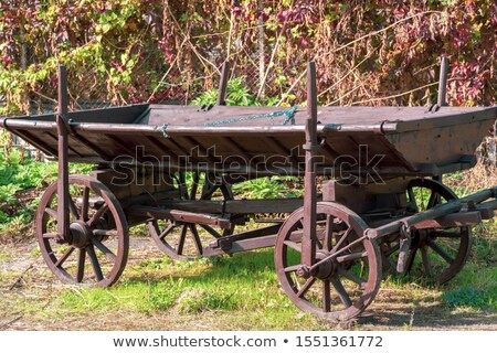 Wooden wheel of antiquarian carriage Stock photo © carenas1
