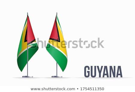 Guyana bandiera bianco mondo segno viaggio Foto d'archivio © butenkow