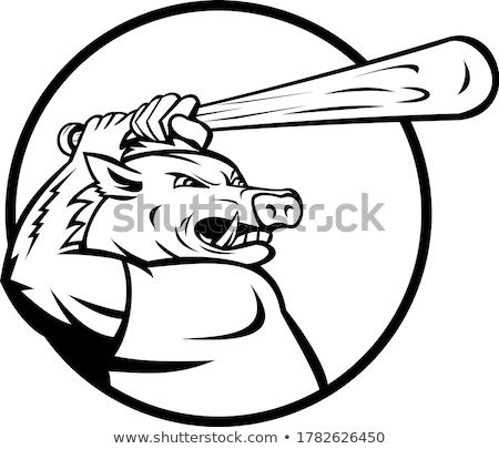 Razorback Wild Boar or Hog with Baseball Bat Batting Circle Mascot Black and White Stock photo © patrimonio