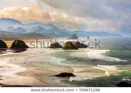 Oregon Coast Stock photo © craig