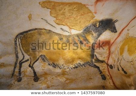 Ló illusztráció festmények barlang művészet falak Stock fotó © experimental