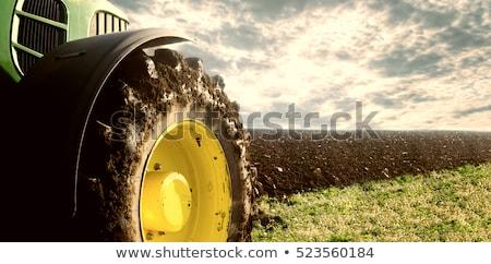 Cultivator tyre Stock photo © stevanovicigor