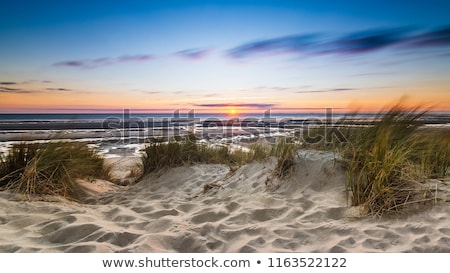 Sleeping Bear Dunes at Lake Michigan. Stock photo © snyfer