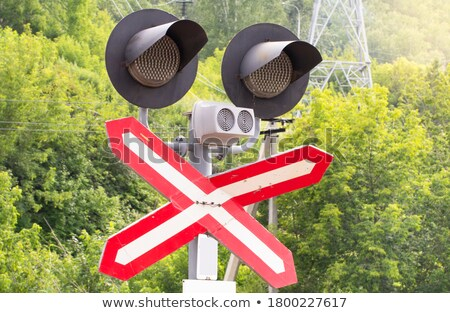 Forest tree signal in red and blue rural track Stock photo © lunamarina