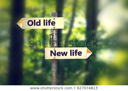 古い 生活 新生活 選択 黄色 方向 ストックフォト © tashatuvango