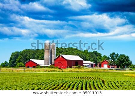 Farm ház mező gyönyörű tájkép naplemente Stock fotó © meinzahn