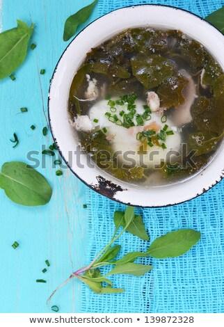 Zuur dok groene plaat voedsel kruiden Stockfoto © ssuaphoto