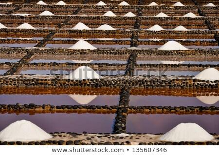 Fresh sea salt  Salinas del Carmen  Fuerteventura Stock photo © chris2766