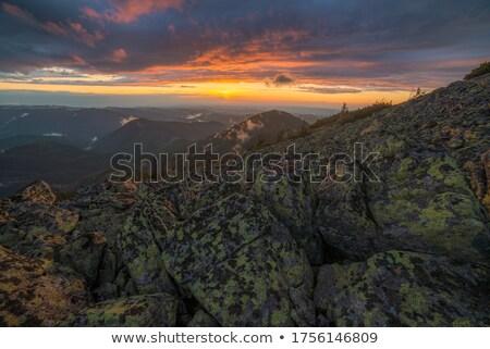 Sunrise sky with sun and sunrays Stock photo © BSANI