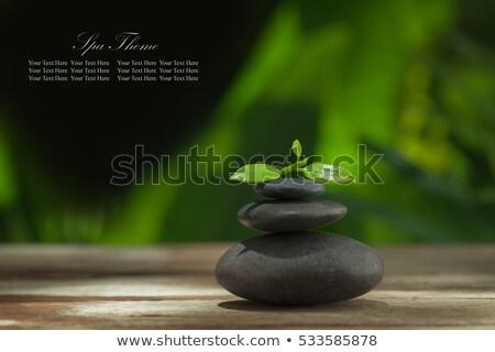 omhoog · stenen · tonen · natuurlijke - stockfoto © jenbray