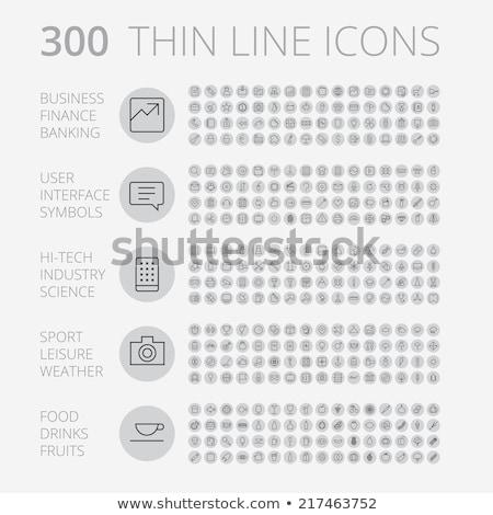 fruits thin line icons stock photo © timurock