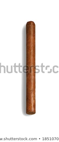 isolated long elegant brown cigars Stock photo © shutswis