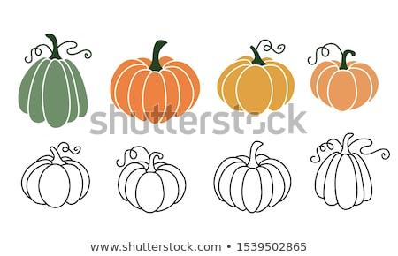 vegetali · cartoon · stile · verdure · fresche · erbe - foto d'archivio © netkov1