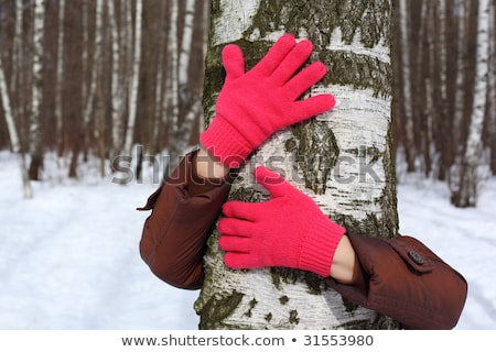 Hands in red gloves embrace birch Stock photo © Paha_L