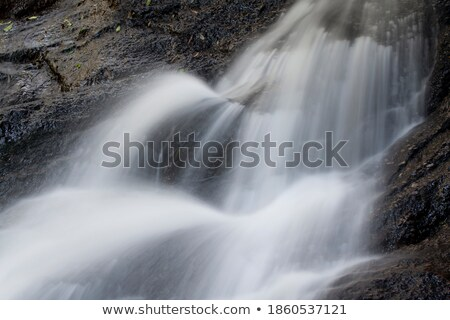 çağlayan detay su ağaç bahar Stok fotoğraf © tmainiero