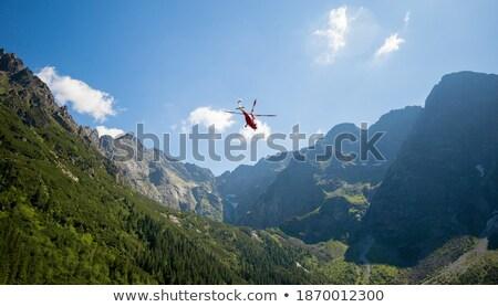 śmigłowca pływające ilustracja czarny księżyc czerwony Zdjęcia stock © bluering