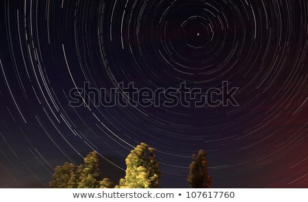 Lonely tree in the night sky with moving stars Stock photo © All32