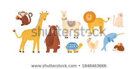 Broastele testoase grădină zoologică ilustrare natură fundal artă Imagine de stoc © bluering