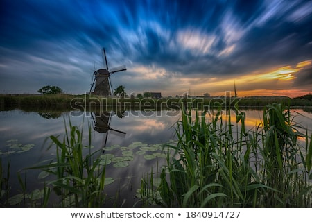traditional dutch windmills with green grass in the foreground the netherlands stock photo © master1305