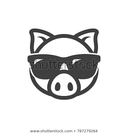 Cool · свинья · Солнцезащитные · очки · Cartoon · вектора · искусства - Сток-фото © vector1st