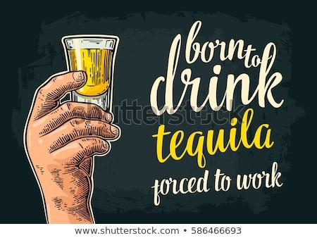 цвета Vintage текила эмблема мексиканских алкоголя Сток-фото © netkov1