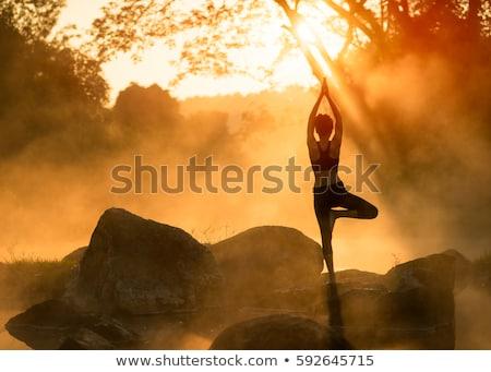 Ninas práctica yoga parque jóvenes atractivo Foto stock © jossdiim
