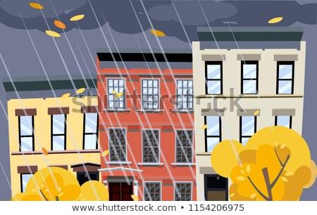 New York autumn Vector flat style. Fall season park views Stock photo © frimufilms