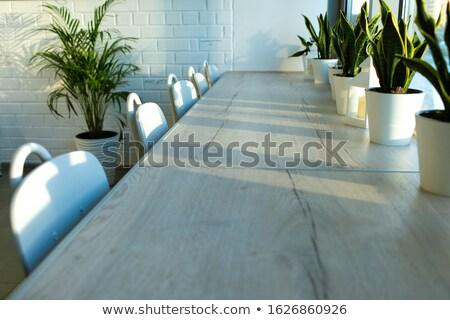 Csetepaté házi zöld növények ablakpárkány néhány Stock fotó © pressmaster