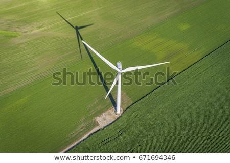 風力タービン トウモロコシ畑 風景 緑 ファーム 産業 ストックフォト © elxeneize