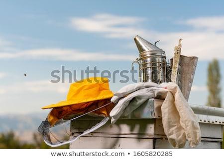 Old beekeeper in bee-garden Stock photo © jossdiim
