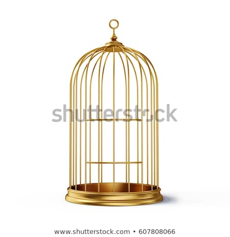 Closed decorative bird cage Stock photo © montego