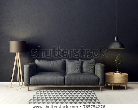 czerwony · skóry · kanapie · czarny · ściany · wystrój · wnętrz - zdjęcia stock © ozaiachin