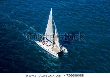 катамаран · парусника · парусного · синий · океана · воды - Сток-фото © pzaxe