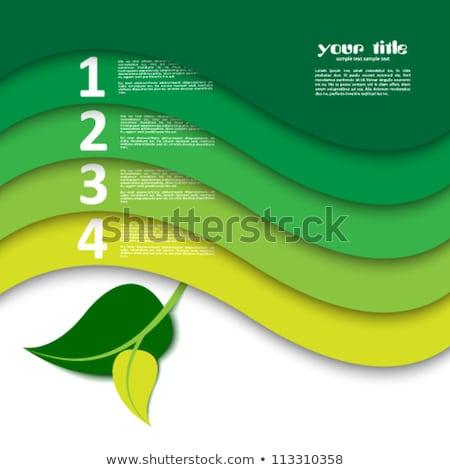 Bio levél brosúra terv zöld szalag Stock fotó © vipervxw