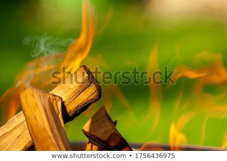 Giallo aprire il fuoco fiamme luminoso dare caldo Foto d'archivio © morrbyte