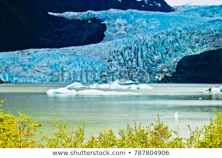 Mendenhall Glacier in Juneau, Alaska Stock photo © snyfer