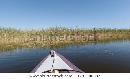Mały rzeki młoda kobieta mały kobiet Zdjęcia stock © gophoto
