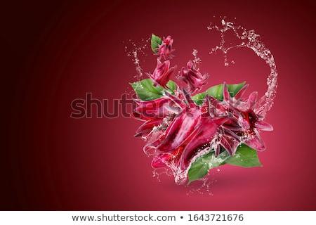 kırmızı · boya · damla · beyaz · soyut - stok fotoğraf © zdenkam