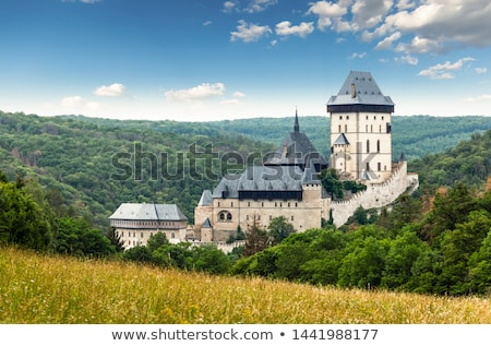 Karlstejn Castle in the summer forest Stock photo © CaptureLight