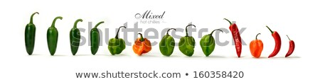Orange and green scotch bonnet chilli pepper Stock photo © lucielang