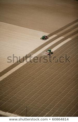 トラクター · フィールド · 地球 · ファーム · ワーカー · 産業 - ストックフォト © agatalina