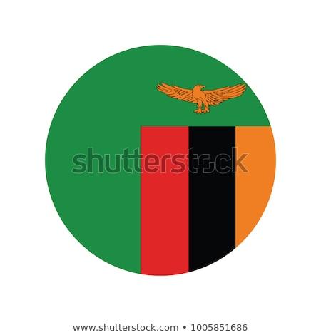 Zambia · zászló · gomb · világ · zöld · kék - stock fotó © mayboro
